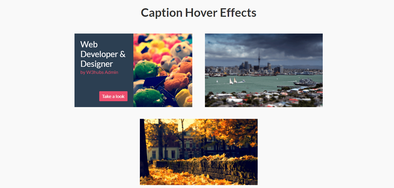 Image Hover Effects In Bootstrap 4
