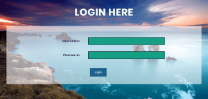 Simple Login Form In CSS